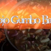 Mojo Gumbo Band ( click here to see )